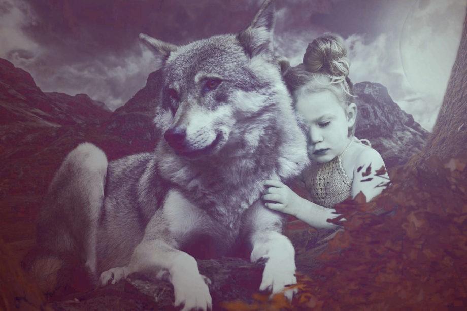 Indianer Wölfe Geschichten Frieden Zweifel